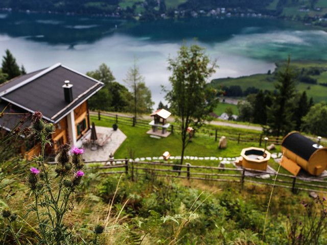 Entwies Alm in Zell am See im Sommer